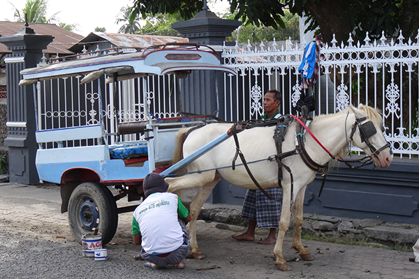 Changing a horseshoe in the streets of Mataram