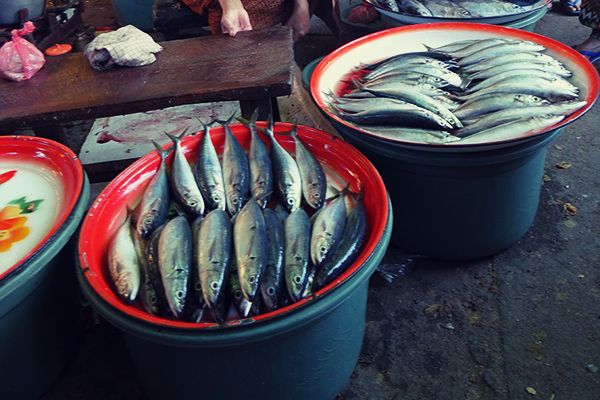fish_market_lovina_indonesia