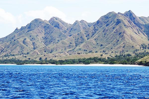 Hills of Komodo island