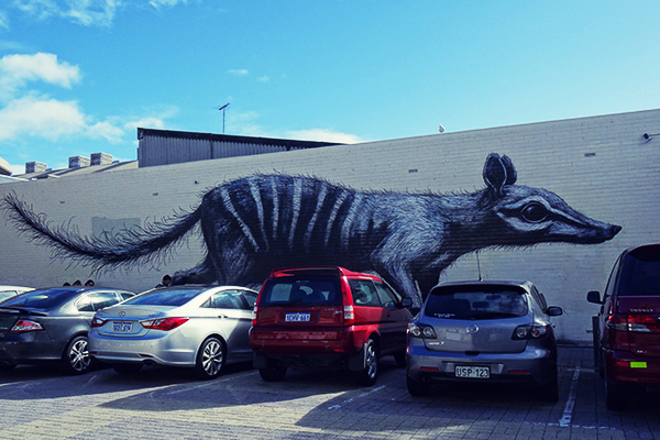 Numbat mural by ROA