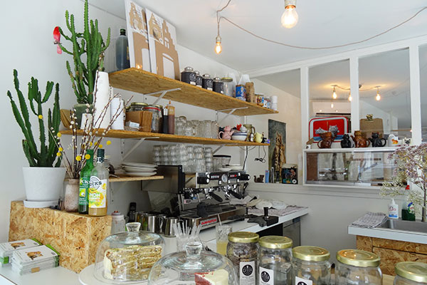 cat_cafe_amsterdam_counter